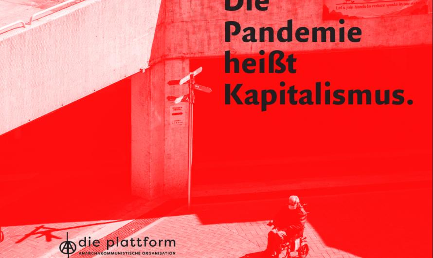 Die Pandemie heißt Kapitalismus